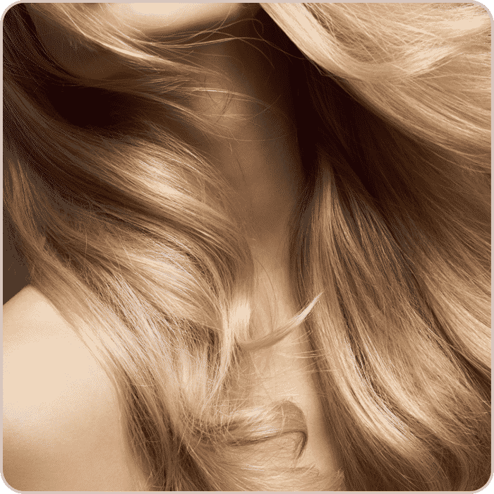 la-maison-square-blond-2